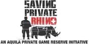 rhino pic