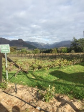 Leaving beautiful Franschhoek - a special place